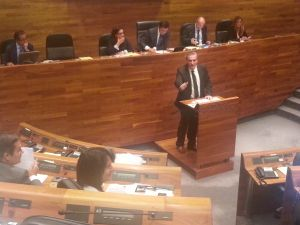 Carlos Su�rez, en la Junta General.