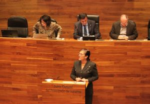 Carmen P�rez Garc�a de la Mata, en la Junta General.