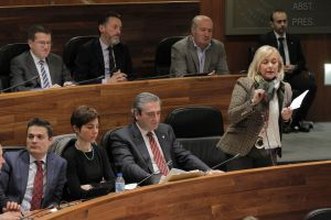 Mercedes Fernández y el Grupo Parlamentario Popular.
