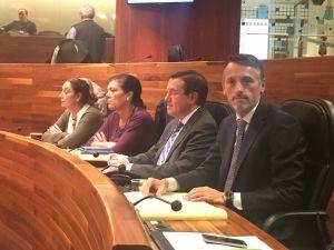 Rodríguez Feito, en el Parlamento asturiano.