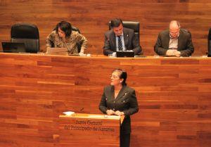 Carmen Pérez García de la Mata, en la Junta General.