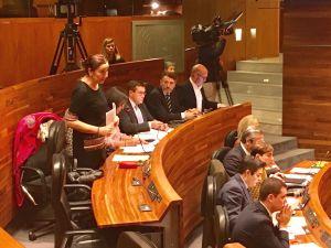 Marifé Gómez, durante su intervención en el Pleno.