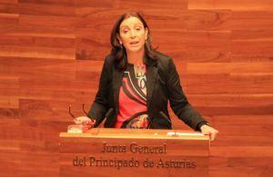 Marifé Gómez, en la tribuna de oradores de la Junta General.