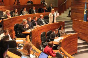 Grupo Parlamentario Popular en la Junta General.