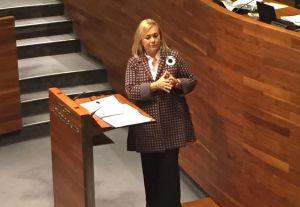 Mercedes Fernández, en la Junta General.