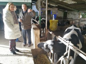 Mercedes Fernández visita la ganadería Tresvalles, en Pillarno (Castrillón).