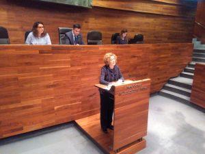 Gloria García, en la tribuna de oradores de la Junta General.