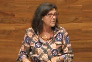 Carmen Pérez García de la Mata, durante su intervención en el Pleno.