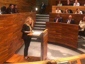 La portavoz del PP Teresa Mallada interviene en el Pleno.